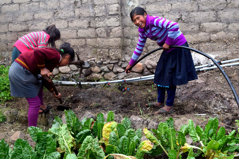 School Garden Programs