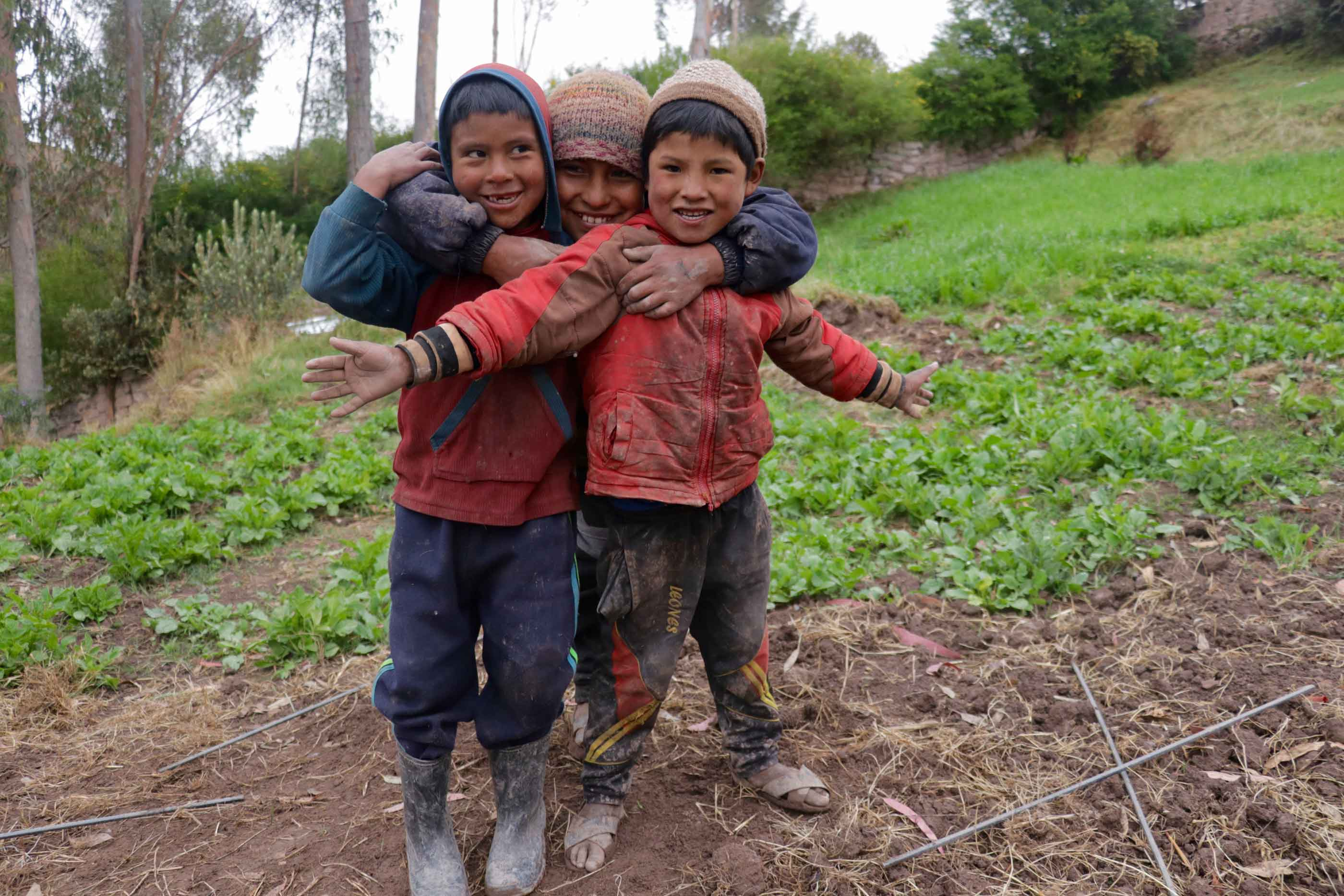 Support the Andean Alliance for Sustainable Development